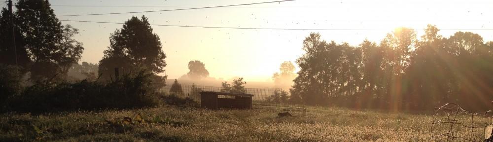 Vicktory Farm
